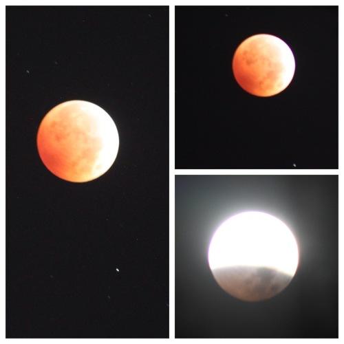 Lunar eclipse montage