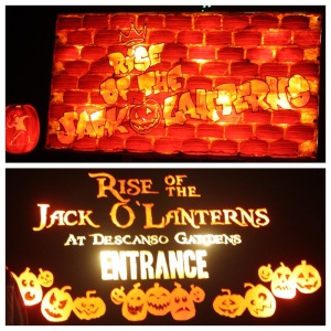 Jack O'Lanterns montage